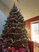 robs-christmas-tree